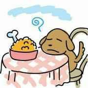 食欲のない犬