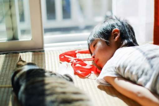 猫 寄り添う 寝る 寄りかかる 添い寝