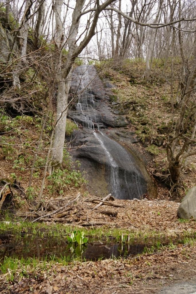 立田の滝とミズバショウ