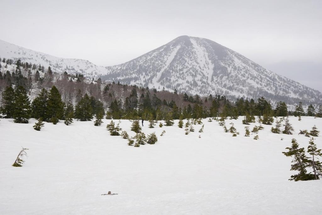 雪原、埋もれる睡蓮沼