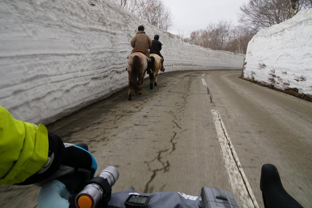 お馬さんと走る。軽車両と軽車両のコラボレーション