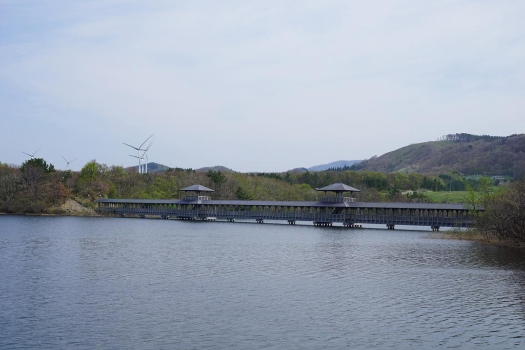 大沼公園の屋根付き木造橋