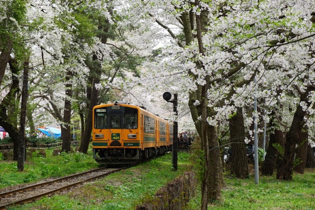 芦野公園駅の桜 with train