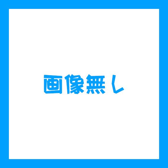 f:id:masaburo91:20190517173920j:plain