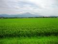 琵琶湖一周の眺め(伊吹山:長浜より)
