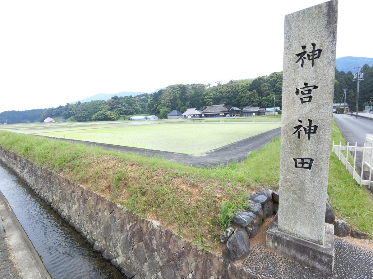 f:id:masahikomifune2:20190527195650j:plain