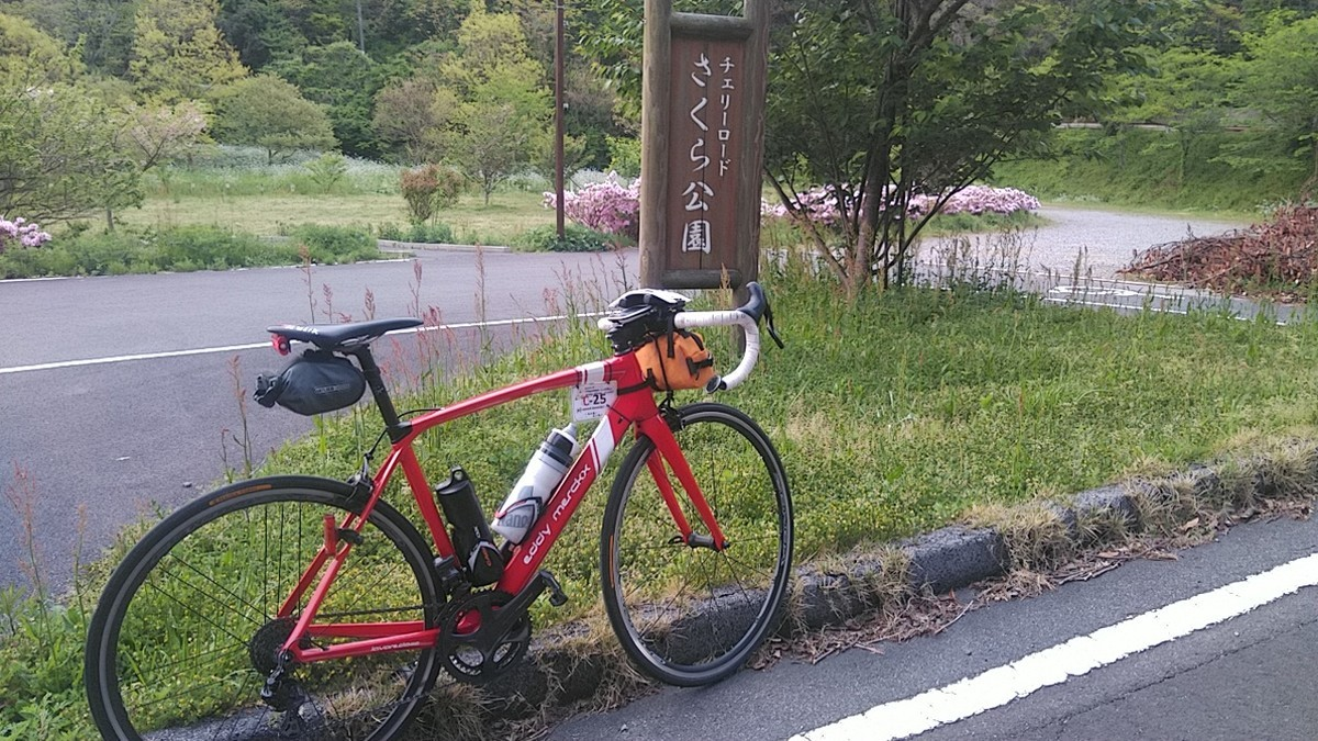 f:id:masahikomifune2:20210428163328j:plain