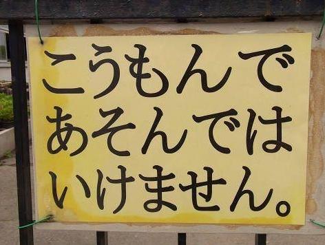 f:id:masahiro0539:20170214230951j:plain