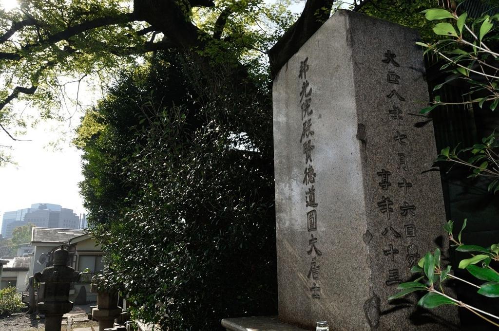f:id:masahirokimu06:20170607105022j:plain