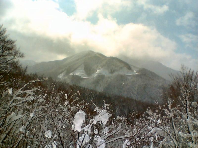 ドルフィンバレイ ヘクターコース頂上から見える景色