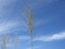 20101003103001