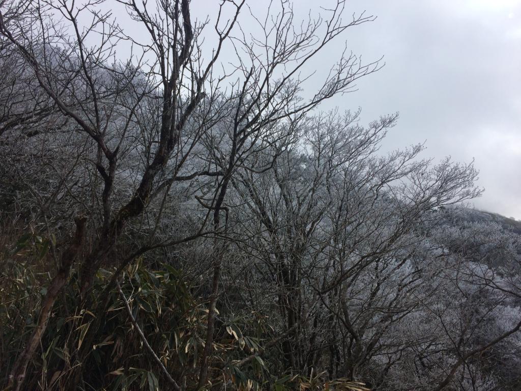 f:id:masahito0989:20161225100357j:plain