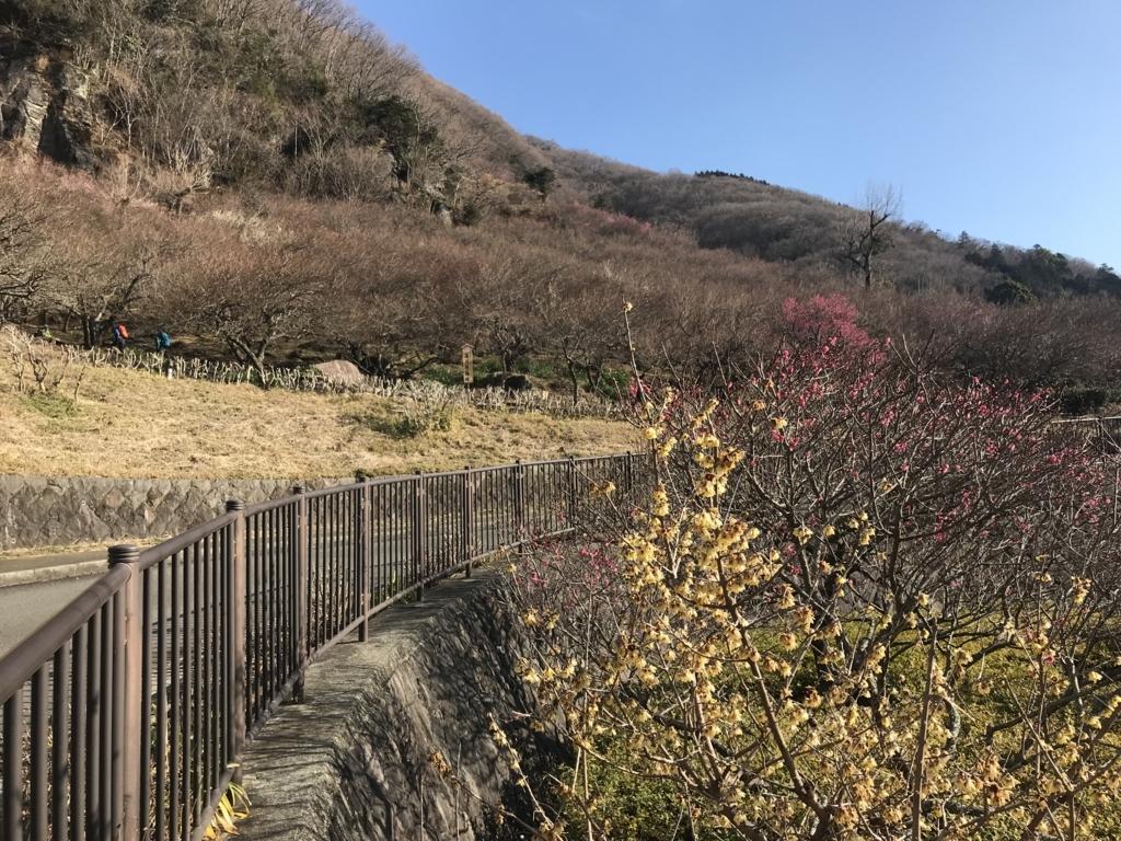 f:id:masahito0989:20180212090819j:plain