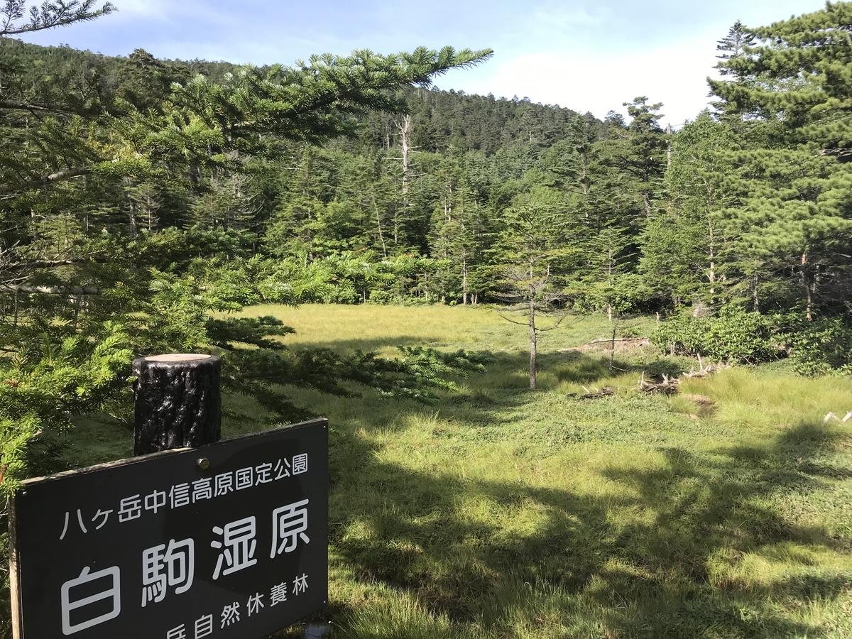 f:id:masahito0989:20190812074818j:plain