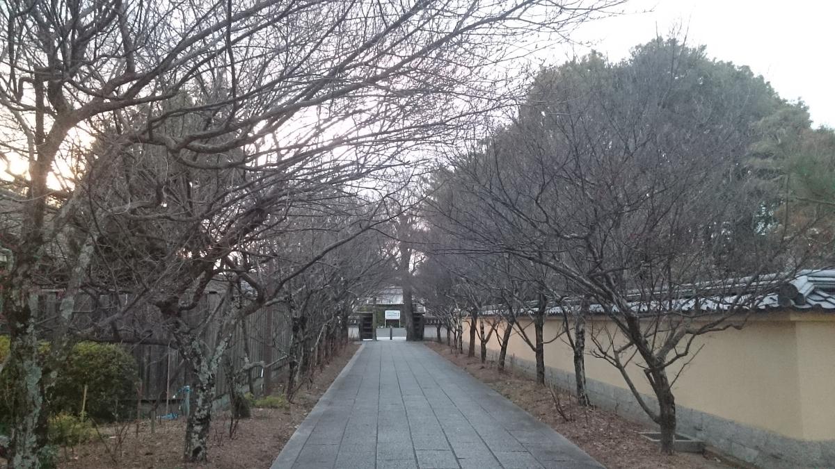 f:id:masakazu_kobayashi:20210112185037j:plain