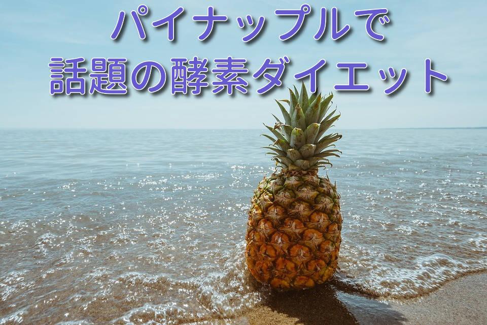 f:id:masaki-ando19840118:20190520113255j:plain