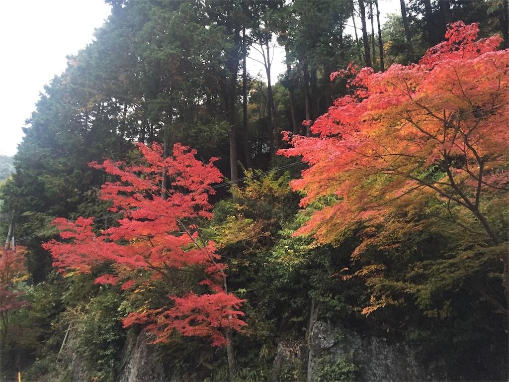 f:id:masaki-k-harada:20161120114937j:image