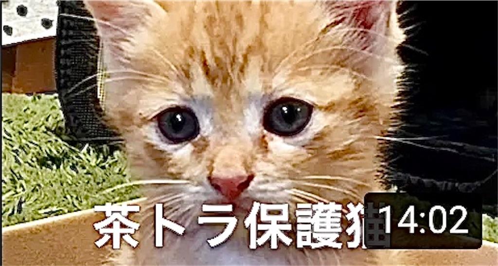 f:id:masaki6379:20200817165729j:image