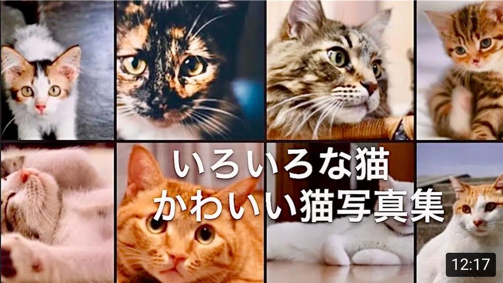 f:id:masaki6379:20200817165809j:image