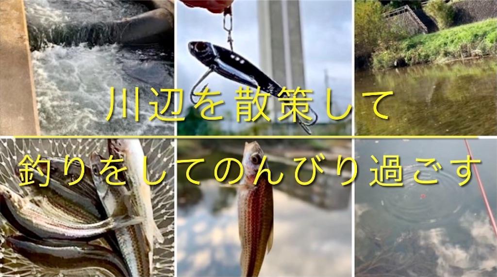 f:id:masaki6379:20201130225440j:image