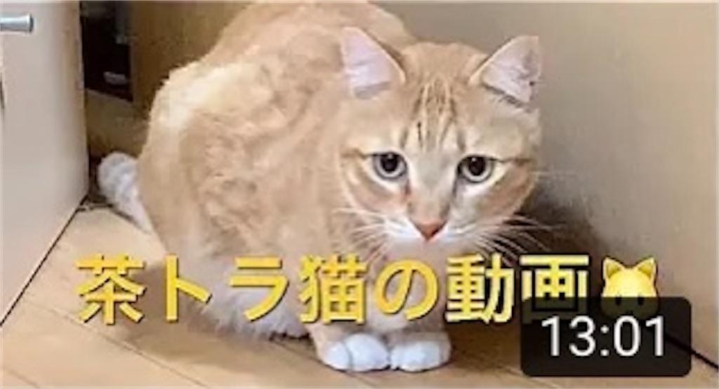 f:id:masaki6379:20210118205100j:image