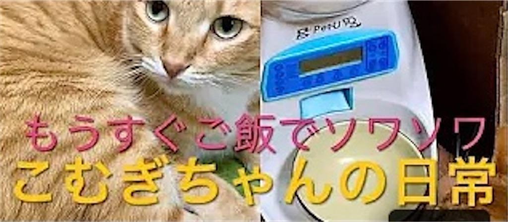 f:id:masaki6379:20210118205312j:image