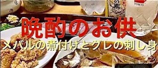 f:id:masaki6379:20210129234437j:image