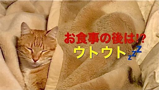 f:id:masaki6379:20210201164132j:image