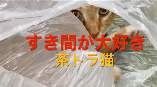 f:id:masaki6379:20210214214038j:image