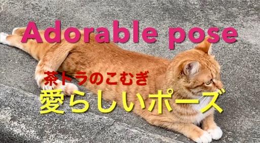 f:id:masaki6379:20210329191529j:image