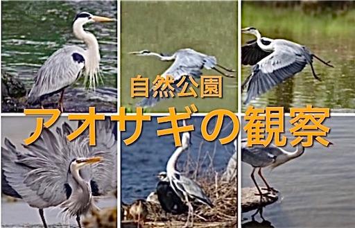 f:id:masaki6379:20210420121034j:image