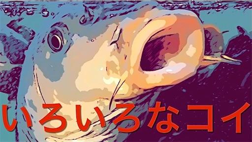 f:id:masaki6379:20210721183628j:image