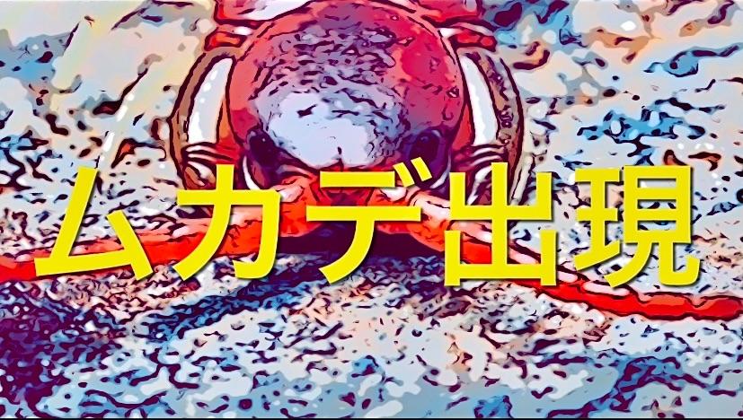 f:id:masaki6379:20210812123604j:image