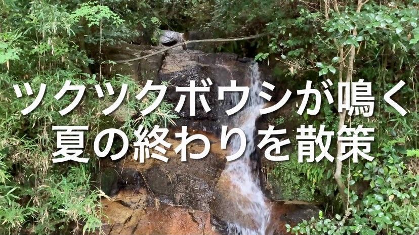 f:id:masaki6379:20210915225431j:image