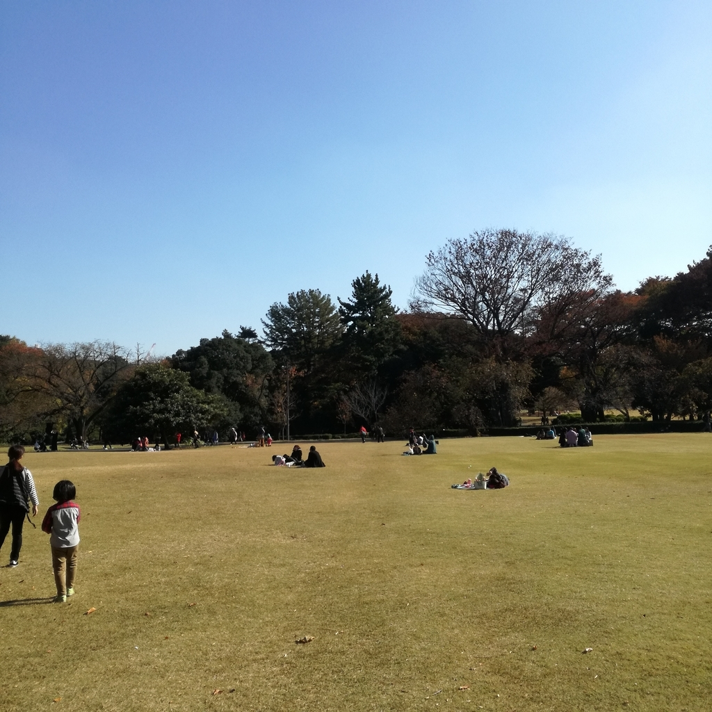 f:id:masakiwasada:20181208084911j:plain