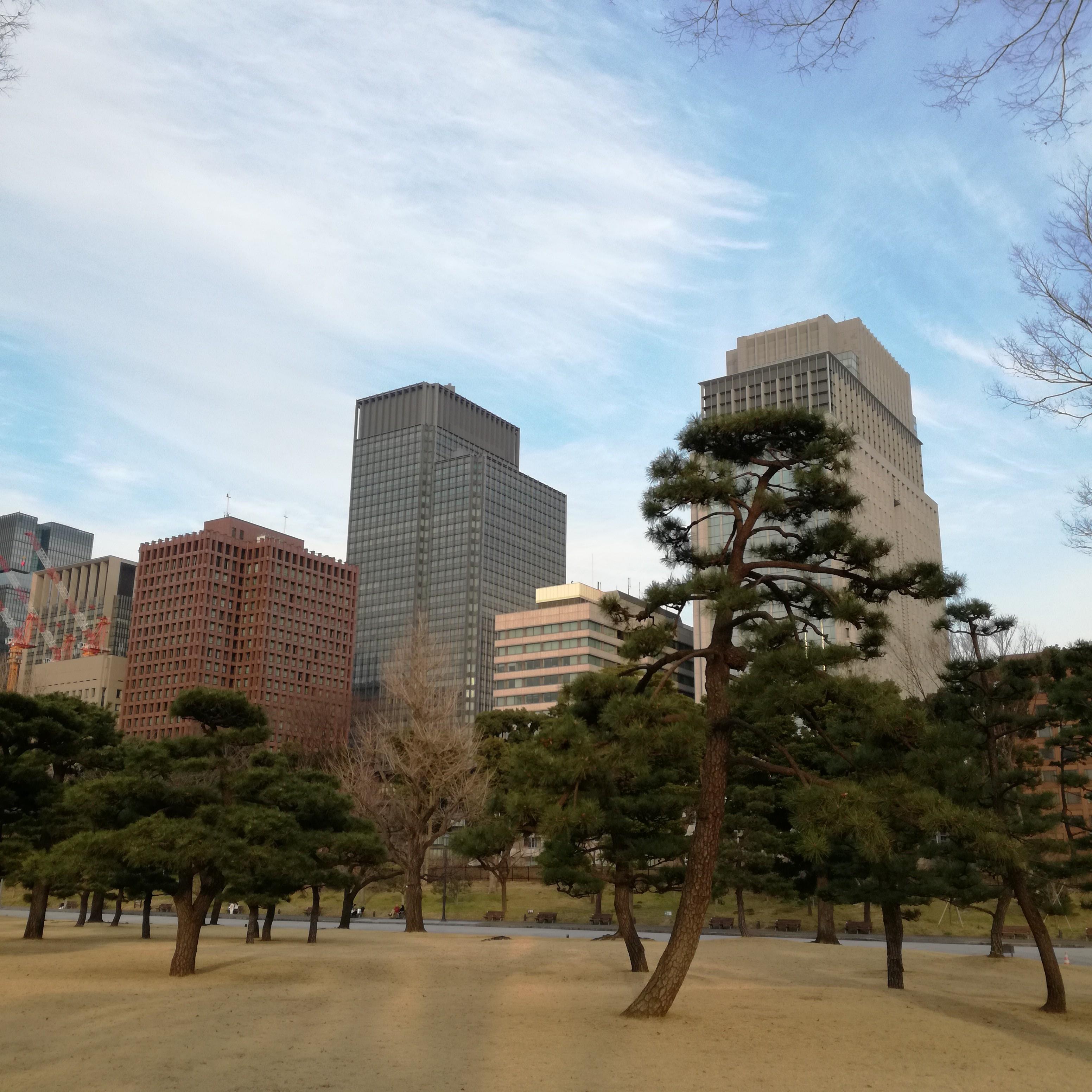 f:id:masakiwasada:20190226122551j:image
