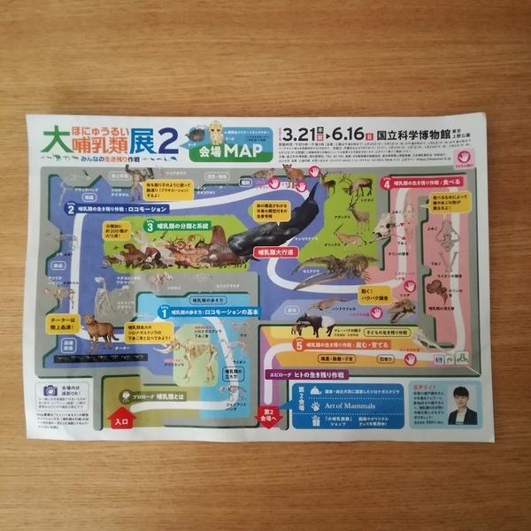 f:id:masakiwasada:20190515135521j:plain