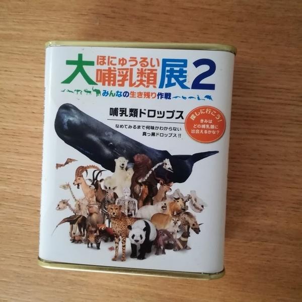 f:id:masakiwasada:20190515135526j:plain