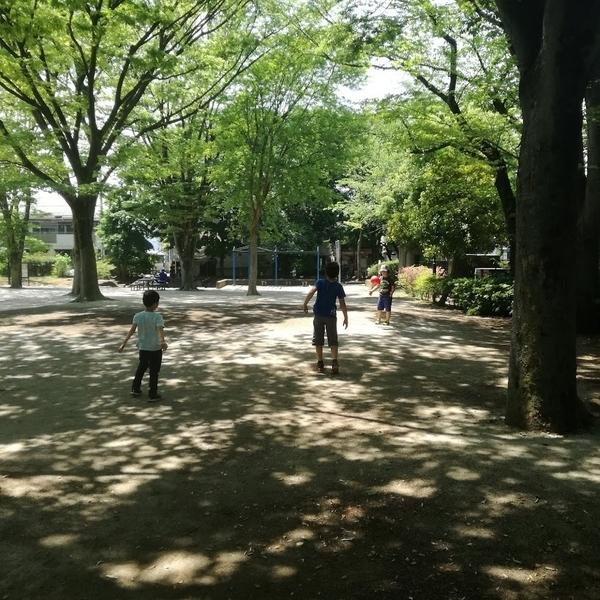f:id:masakiwasada:20190527103024j:plain