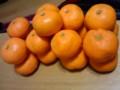 [果物] 蜜柑いっぱい
