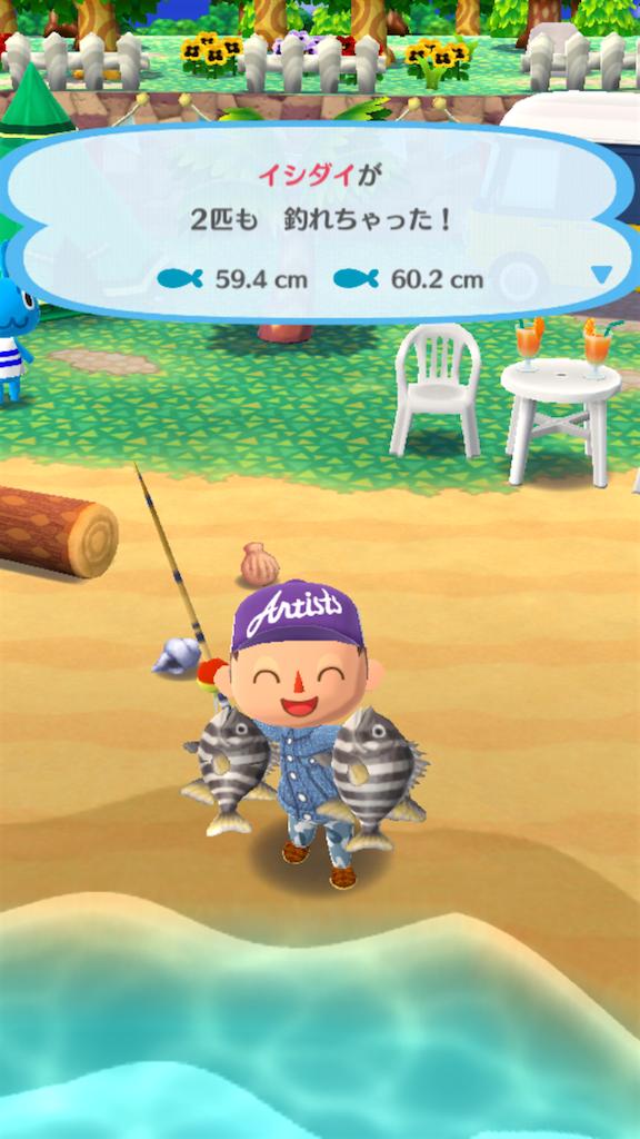 どうぶつ の 森 釣り
