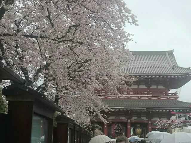 f:id:masami-happy:20170409234958j:image