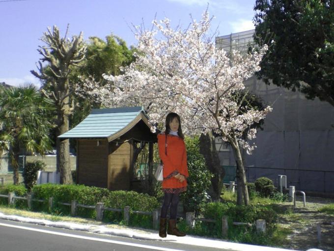 f:id:masami71:20120412225129j:image