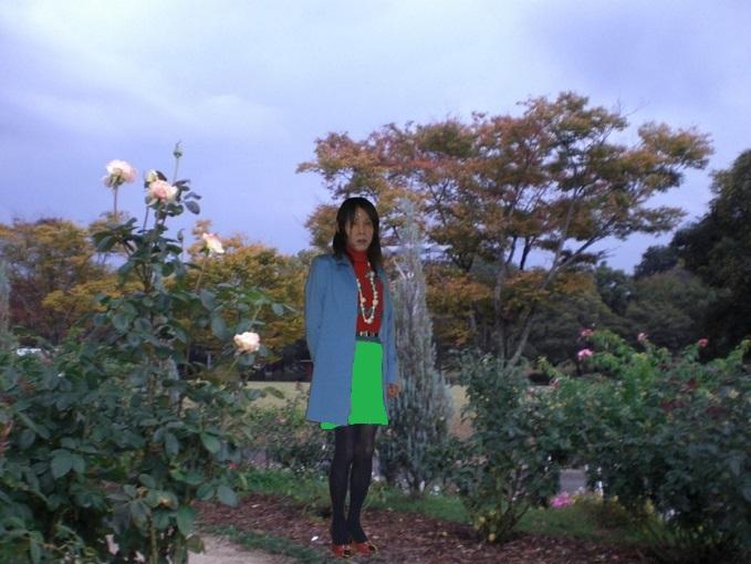 f:id:masami71:20131201192539j:image