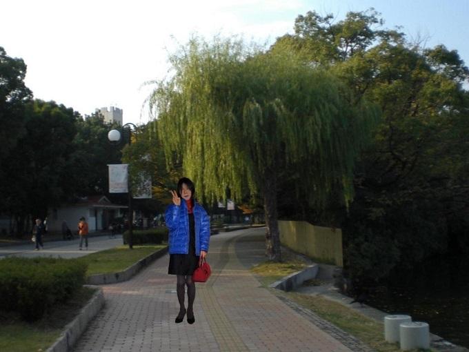 f:id:masami71:20141228125215j:image