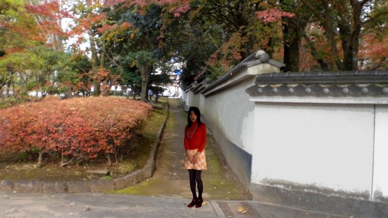 f:id:masami71:20160121194552j:image