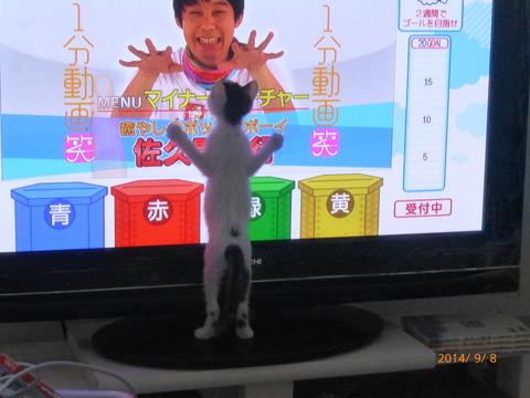 f:id:masami_takasu:20171019142643j:plain