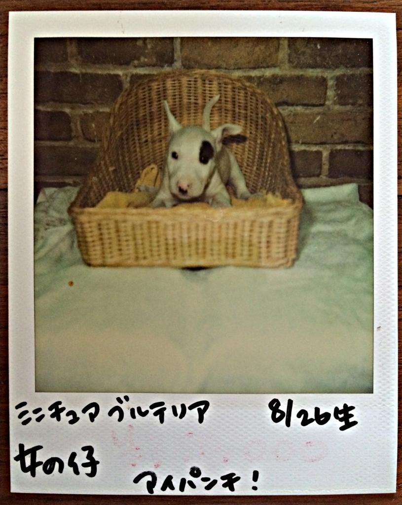 f:id:masami_takasu:20171103113117j:plain