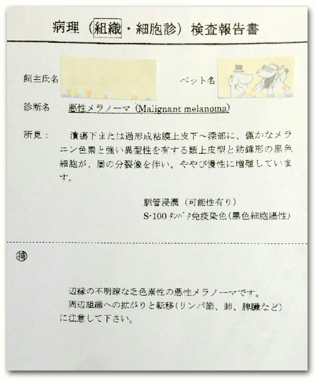 f:id:masami_takasu:20171105145928j:plain