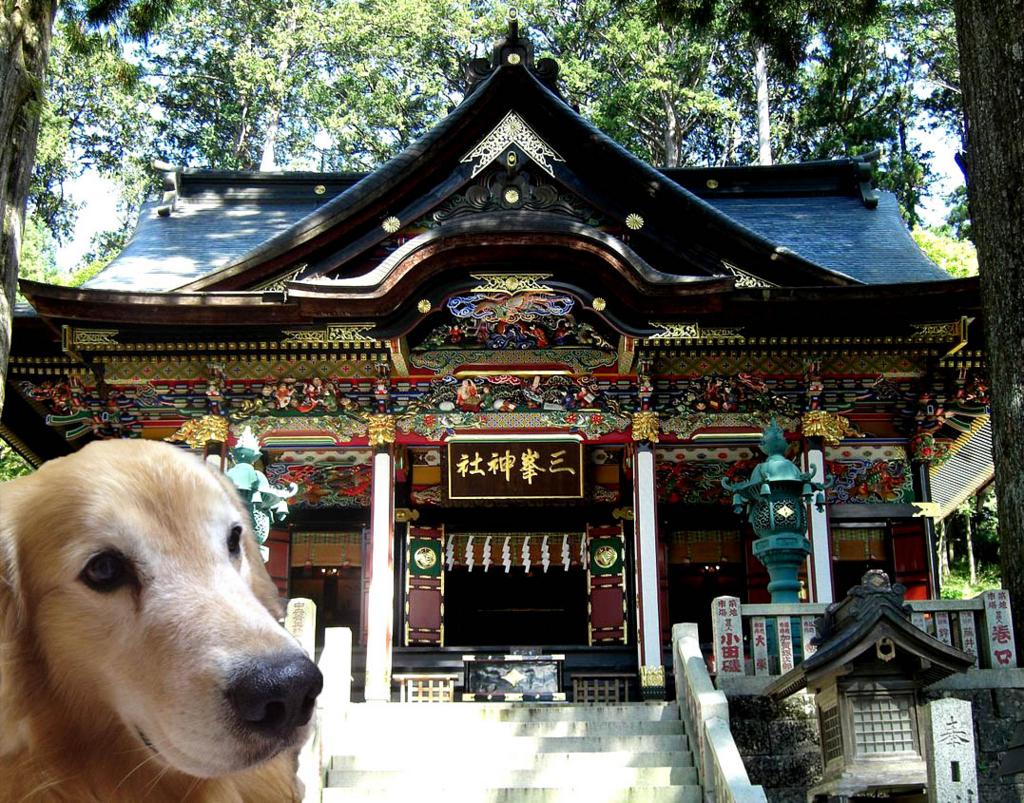 f:id:masami_takasu:20171105152127j:plain